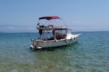 Tradicao Boat Tours