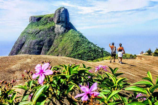 Jungle Me - Hiking and Trekking Ecotours, Rio de Janeiro, Brazil