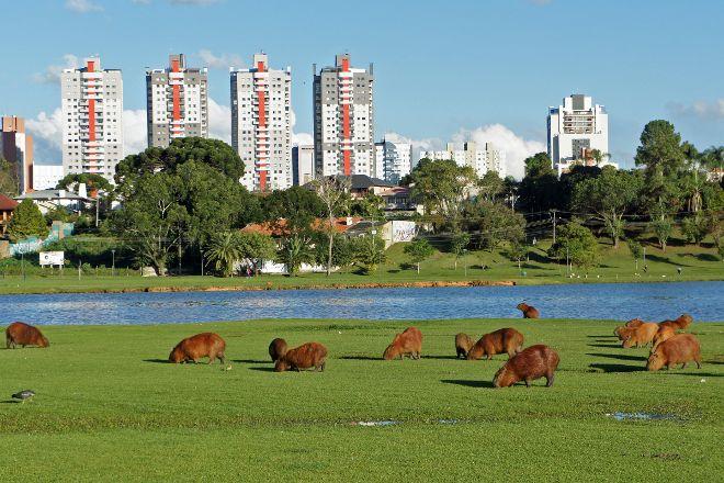 Parque Barigui, Curitiba, Brazil