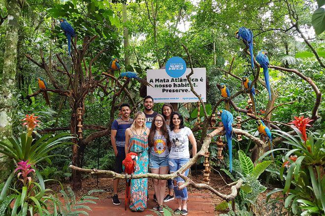Parque das Aves Bird Park, Foz do Iguacu, Brazil