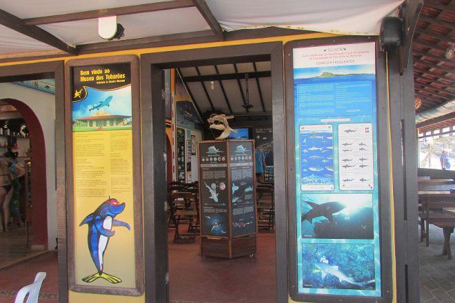 Shark Museum, Fernando de Noronha, Brazil