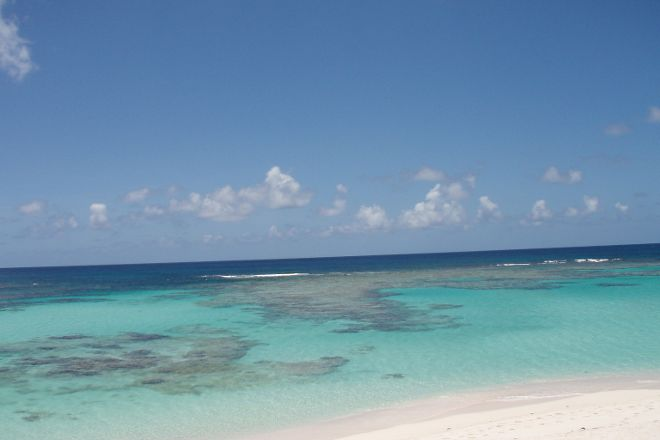 Flash of Beauty, Anegada, British Virgin Islands