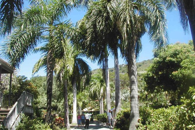 J.R. O'Neal Botanic Gardens, Road Town, British Virgin Islands