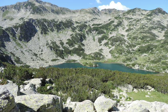 Pirin National Park, Pirin, Bulgaria