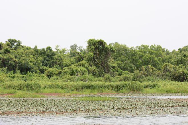 Mare aux Hippopotames, Bobo Dioulasso, Burkina Faso