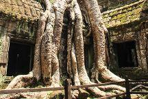 Angkor Tuk Tuk Service, Siem Reap, Cambodia