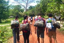 Green Jungle Trekking Tours, Banlung, Cambodia