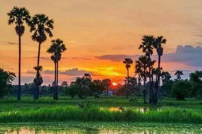 Cambodia Farm Tour, Siem Reap, Cambodia