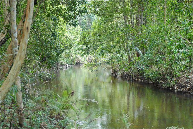 Kulen Prumep Wildlife Sanctuary, Tbeng Meanchey, Cambodia