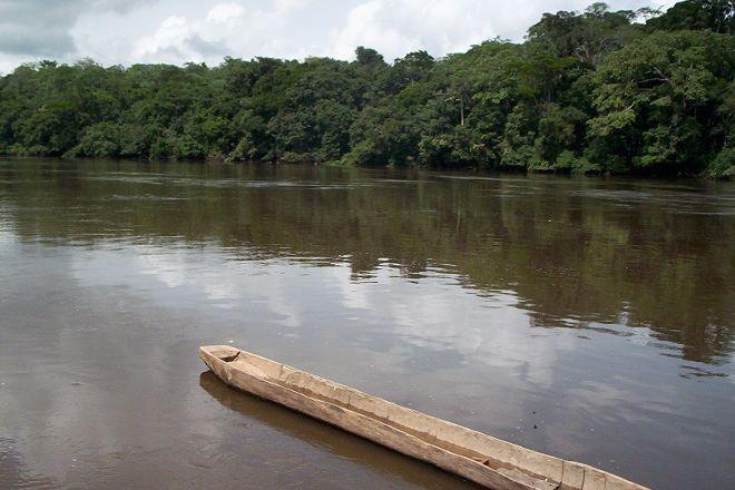 Dja Faunal Reserve, Somalomo, Cameroon