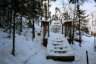 Cameron Falls Trail