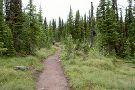 Carthew - Alderson Trail