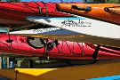 Sealegs Kayaking & Marine Adventures