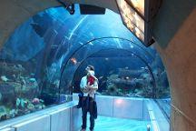 Aquarium du Quebec, Quebec City, Canada