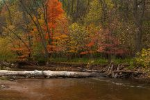 Bronte Creek Provincial Park, Oakville, Canada