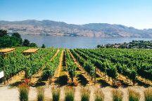 Carefree Wine Tours