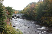 Corner Brook Stream Trail, Corner Brook, Canada