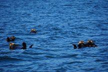 Maquinna Provincial Marine Park, Tofino, Canada