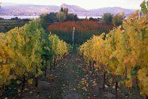 Okanagan Wine Country Tours