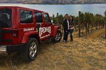 Open Air Adventures & Wine Tours