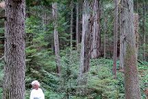 Pacific Rainforest Adventure Tours Inc, Parksville, Canada
