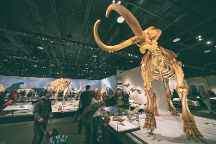Royal Alberta Museum, Edmonton, Canada