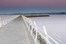 Scenic Marine Route, Victoria, Canada