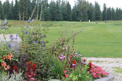 Coyote Creek Golf Club, Sundre, Canada