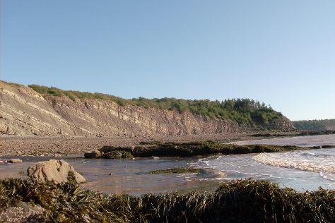 Joggins Fossil Cliffs Centre, Joggins, Canada