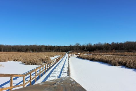 Wye Marsh Wildlife Centre, Midland, Canada