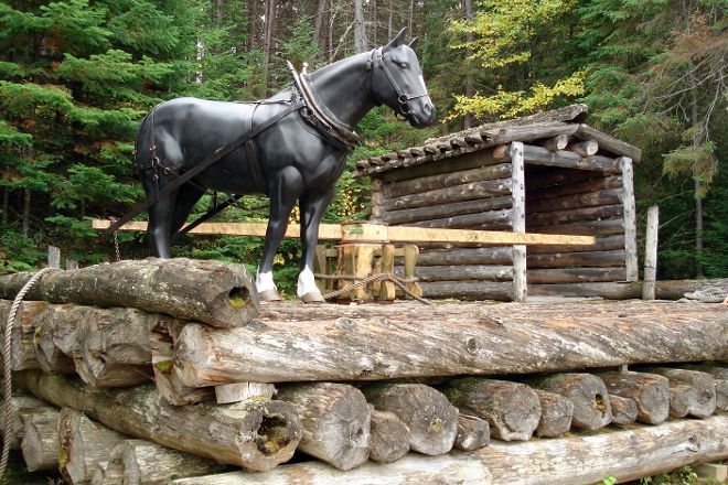 Algonquin Logging Museum Trail, Algonquin Provincial Park, Canada