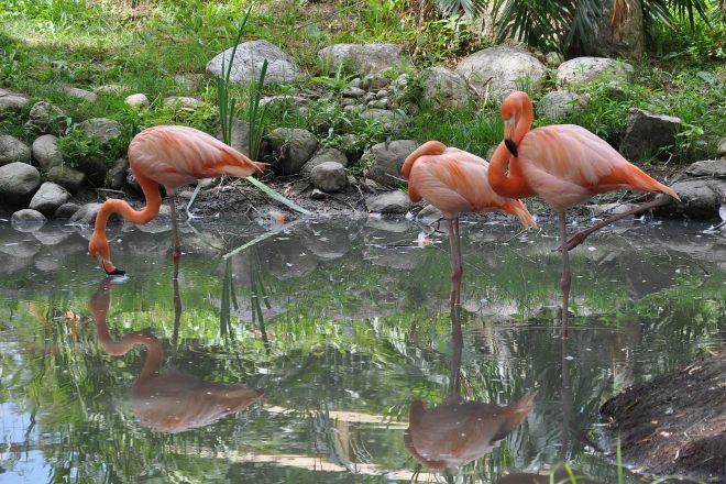 Brantford Twin Valley Zoo, Brantford, Canada