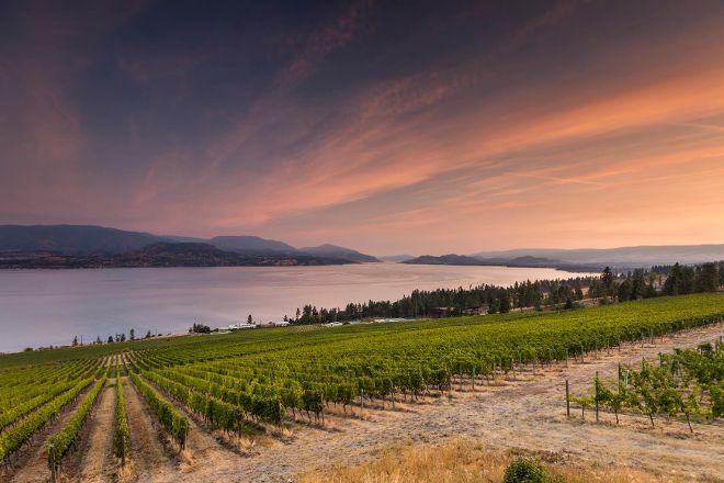 CedarCreek Estate Winery, Kelowna, Canada