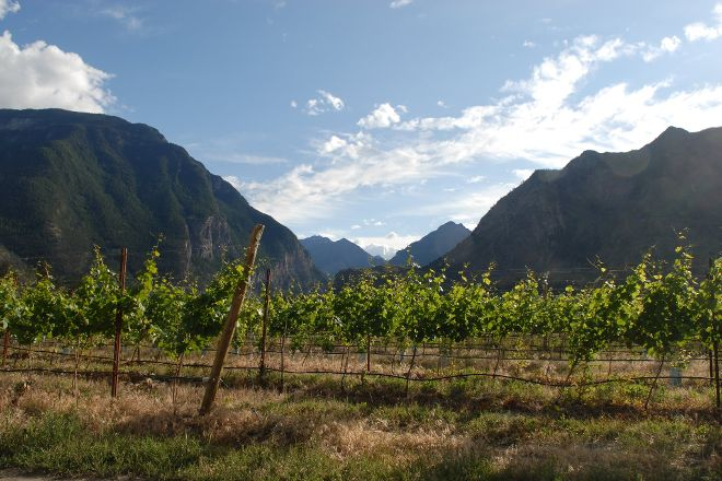 Fort Berens Estate Winery, Lillooet, Canada