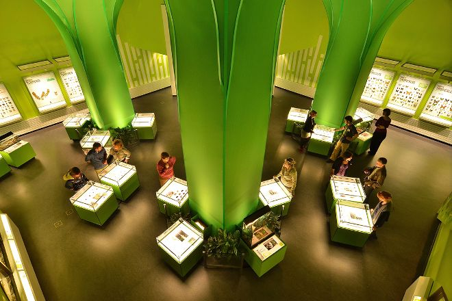 Insectarium de Montreal, Montreal, Canada