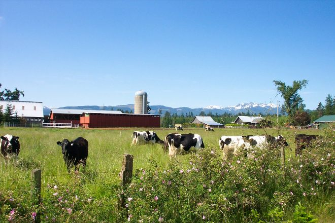 Little Qualicum Cheeseworks, Parksville, Canada