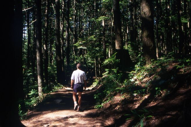 Lynn Headwaters Regional Park, North Vancouver, Canada