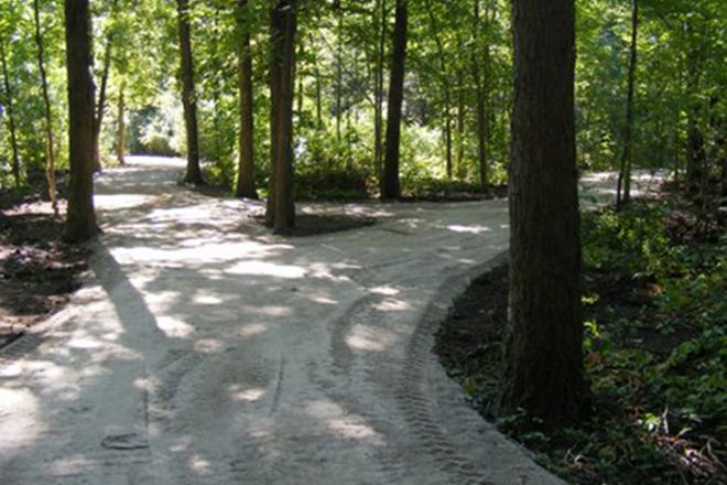 McAuliffe Woods Conservation Area, Windsor, Canada