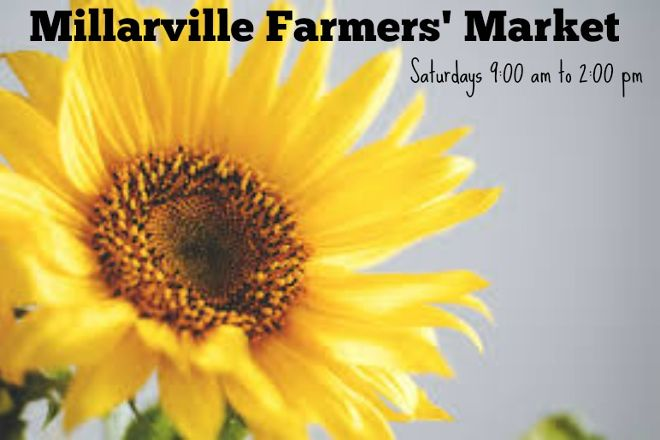 Millarville Farmers Market, Millarville, Canada