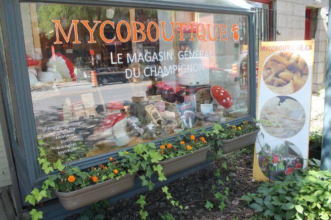 Mycoboutique, Montreal, Canada