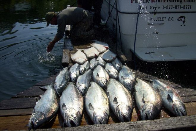 Pacific Rim Fishing Charters, Ucluelet, Canada