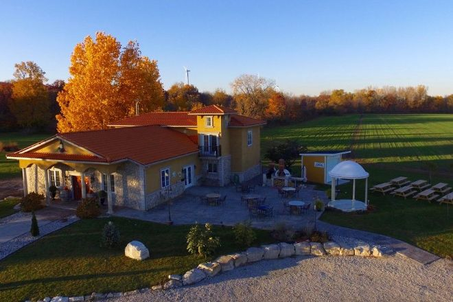Paglione Estate Winery, Harrow, Canada