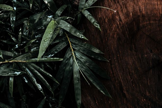Spa Cloud, Montreal, Canada