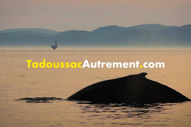 Tadoussac Autrement, Tadoussac, Canada