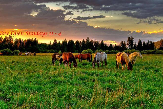 The Cowboys Choice, Vernon, Canada
