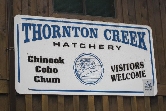 Thornton Creek Hatchery, Ucluelet, Canada