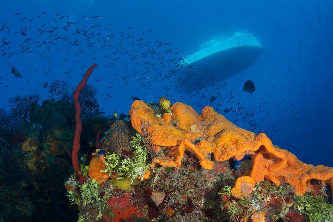 Divetech, West Bay, Cayman Islands