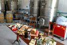 Attilio & Mochi Passionate Winemakers