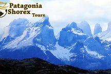PatagoniaShorex - Tours, Puerto Varas, Chile