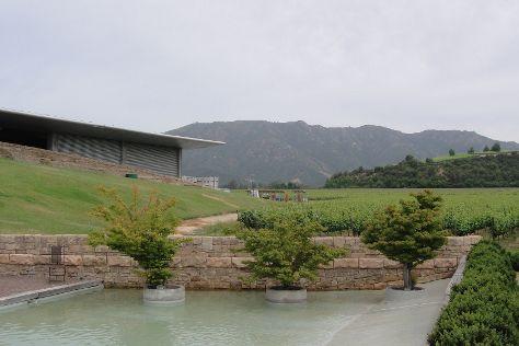 Vina Montes, Santa Cruz, Chile